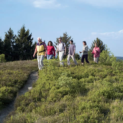 Wandern Willingen Sauerland